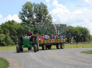 landwehrs-wagon